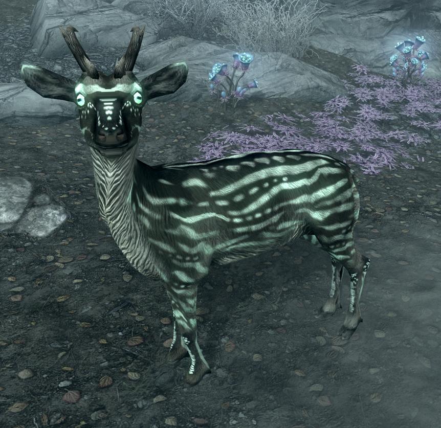 Vale Deer