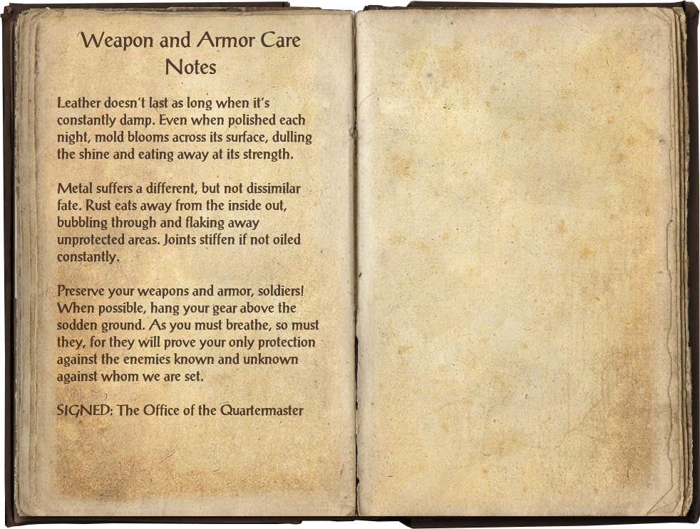 Weapon and Armor Care Notes