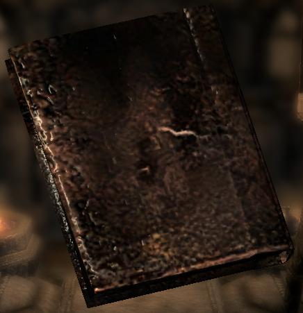 Сожжённая книга