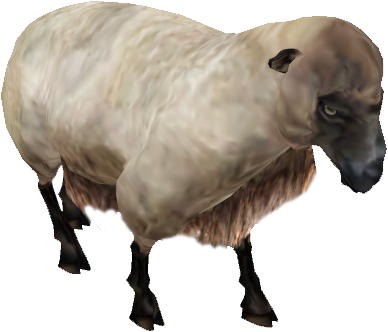 Овца (Oblivion)