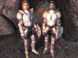 The Wayward Knight.jpg