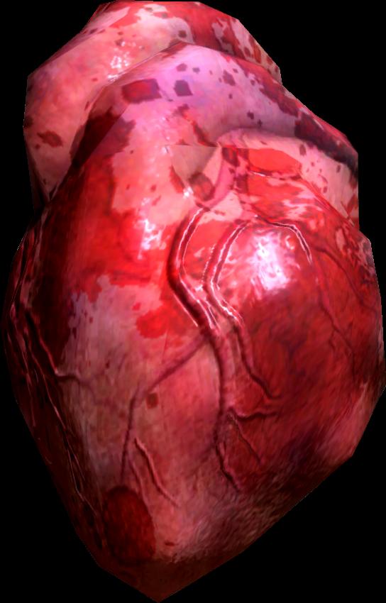 Human Heart (Skyrim)