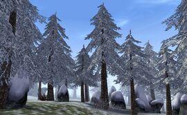 Hirstaang Forest.jpg