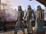 Mages Guild (Online)