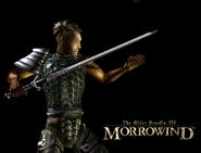 Redgard (Morrowind)