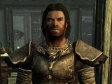 Wolf Armor (Skyrim)