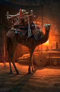 Merchant's Camel card art