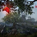 The Elder Scrolls Online 6.jpg