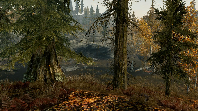 Осенняя поляна (Skyrim)