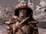 Никулас (Dragonborn)