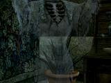 Wraith of Sul-Senipul
