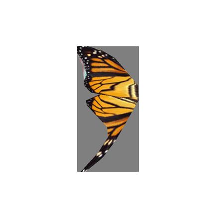 Крыло монарха (Skyrim)