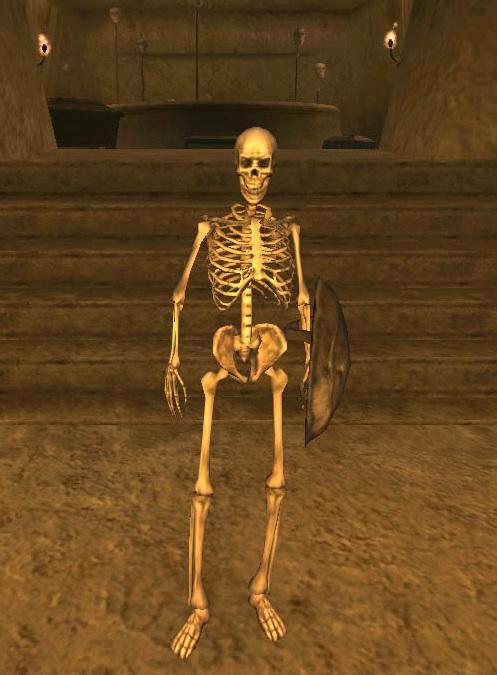 Скелет (Morrowind)