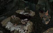 Ranni żołnierze w lazarecie (Skyrim)