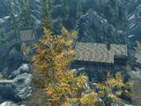 Резиденция «Чёрный Вереск» (Skyrim)