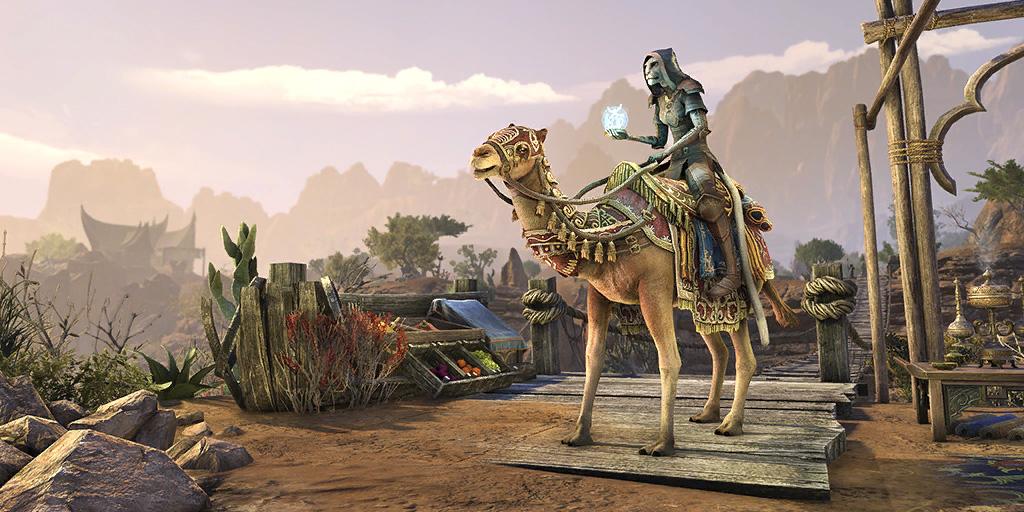 Baandari Pedlar Camel