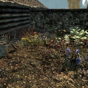 Honeyside garden.png