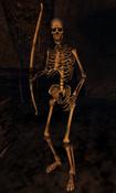 Skeleton Archer Morrowind