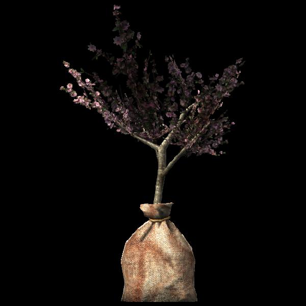 Побег Великого Древа