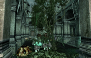 New Sheoth Palace Syl's Private Garden
