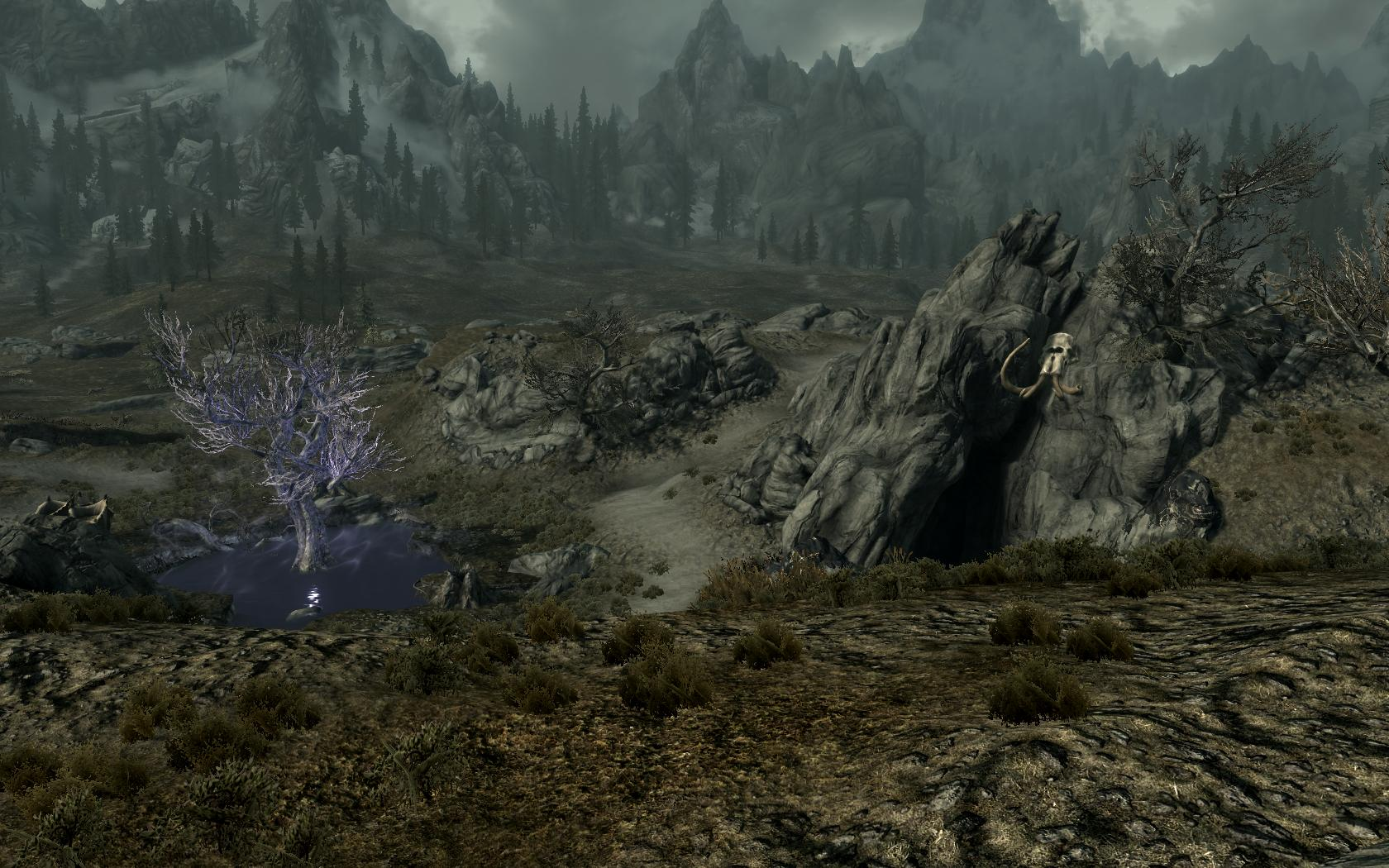 Sleeping Tree Cave