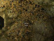 Skyrim ingredients Jazbay Grapes