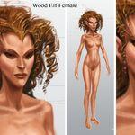 Wood Elf Female.jpg