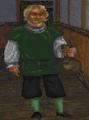 Fighters Guild Doorman