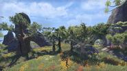Southern Elsweyr Landscape 2