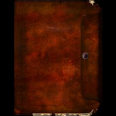 Дневник, обложка 2.png