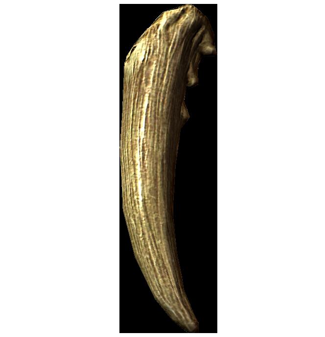 Клык хоркера (Skyrim)