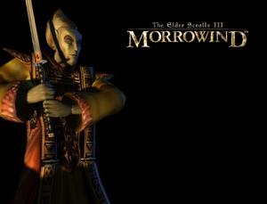 Altmer (Morrowind).png