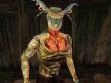 Big Head (Morrowind)