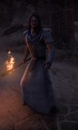 Incendiaire chasseur de trésors