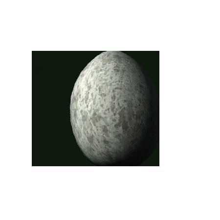 Куриное яйцо (Skyrim)
