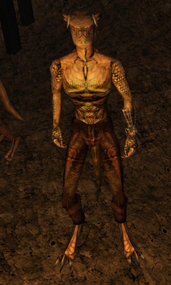 Tasha (Morrowind)