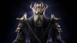 Bethsoft-dragonpriest.jpg