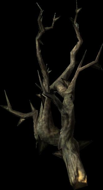 Canis Root (Skyrim)