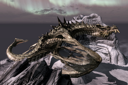 Paarthurnax TotW.png