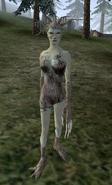 Spriggan (Morrowind)