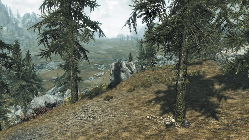 The Skeleton's Strong Box: Greymoor