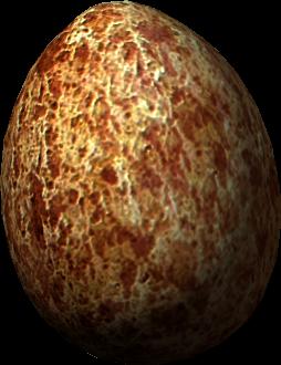 Uovo di tordo