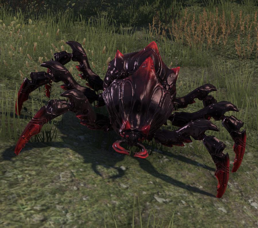 Assassin Beetle (Online)
