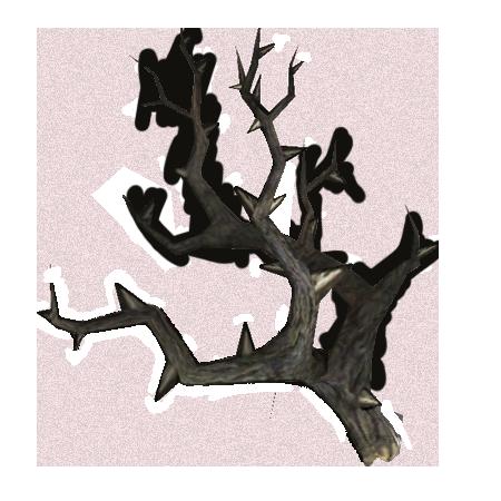 Собачий корень (Skyrim)