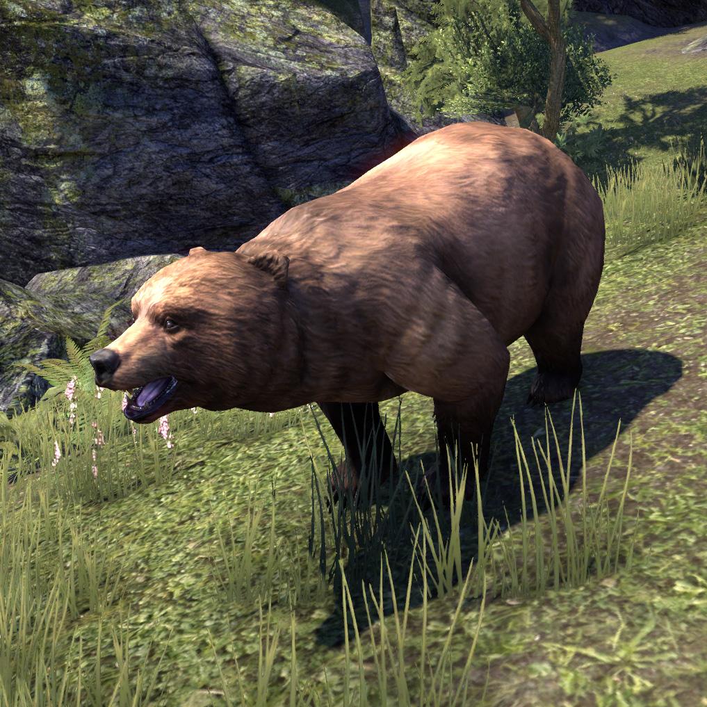 Медведь (Online)