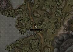 Пункт Толстой Ноги (карта).jpg