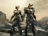 Nord Hero Armor
