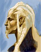 High Elf Face