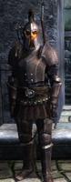 Imperial guard(oblivion)