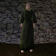 Простая Мантия 14 (Morrowind) (муж)